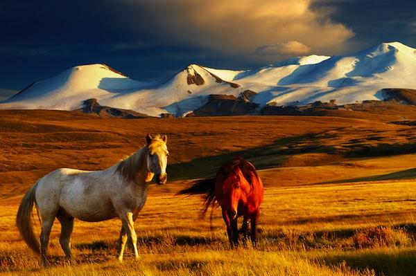 Breathtaking great plains.