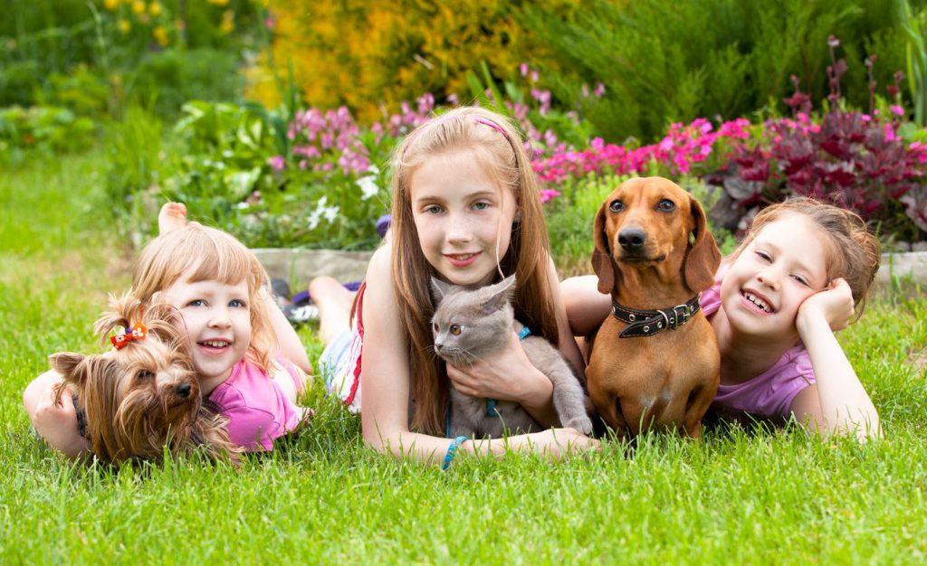 Travelling with children isn't a piece of cake and neither are finding pet-sitters.