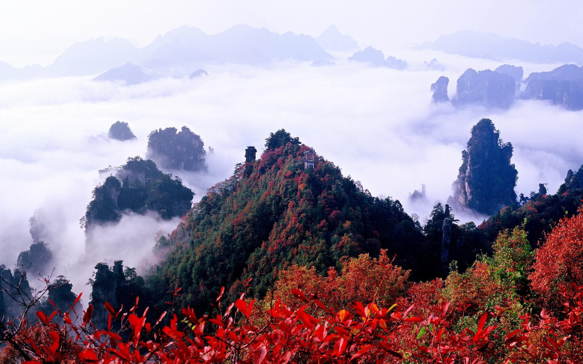 Zhangjiajie-National-Forest-Park-China-7