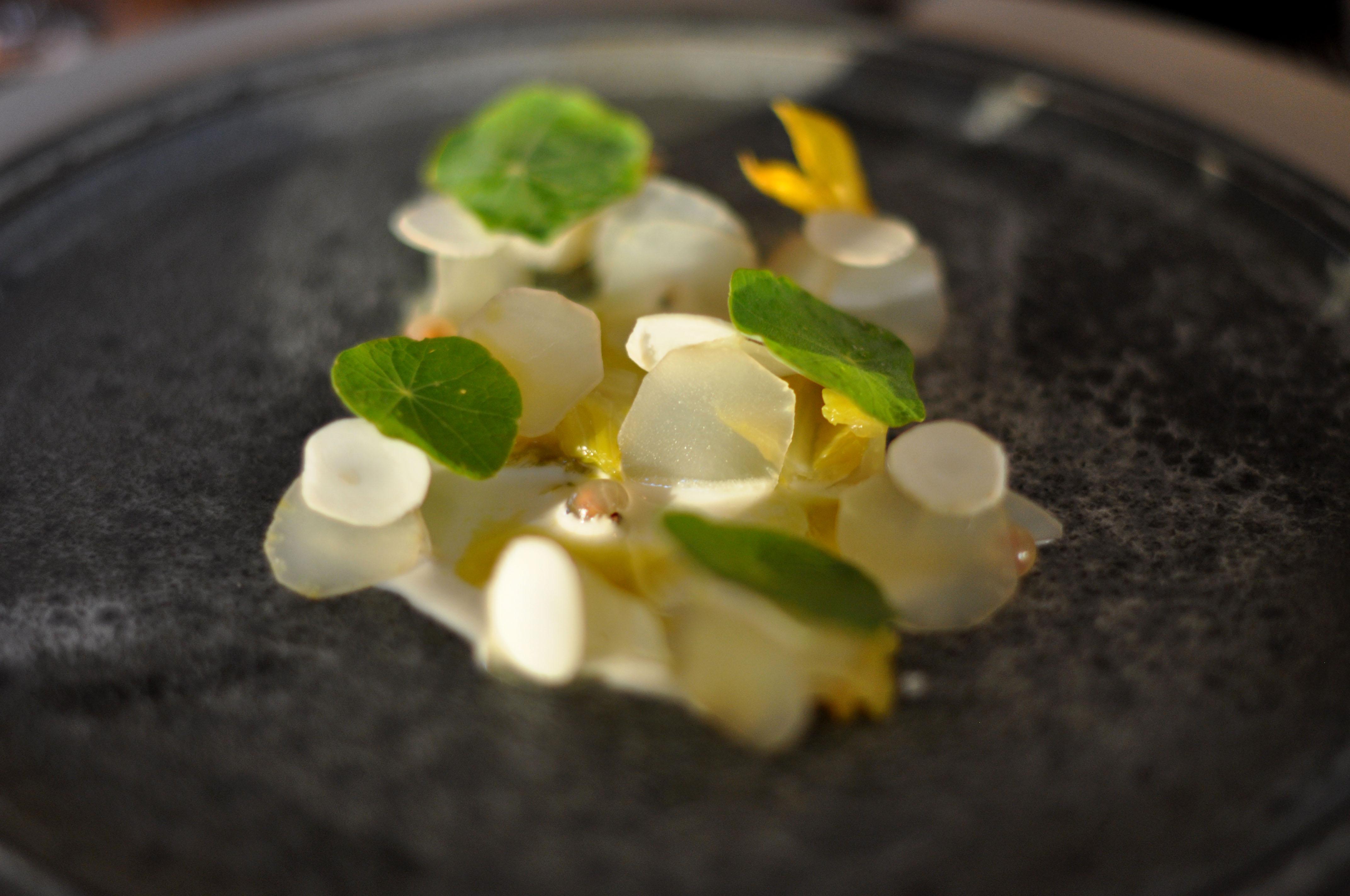 Restaurant_Noma_Hjertesalat_med_friske_hasselnødder,_æble,_hasselnøddeolie,_agurkeblomster_og_hvide_ribs_(4959765228)