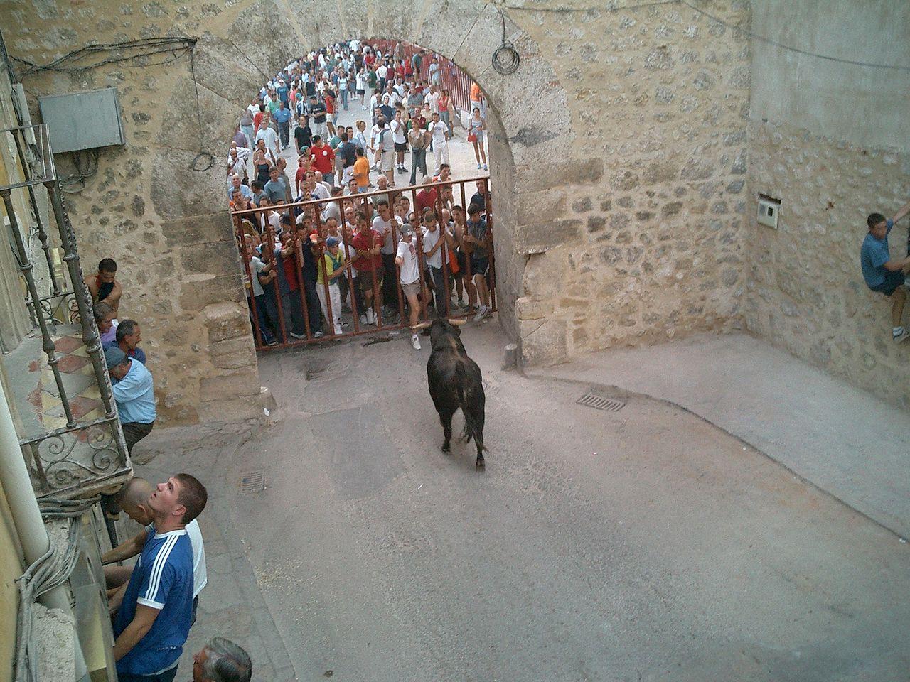 1280px-Encierro_Pastrana2