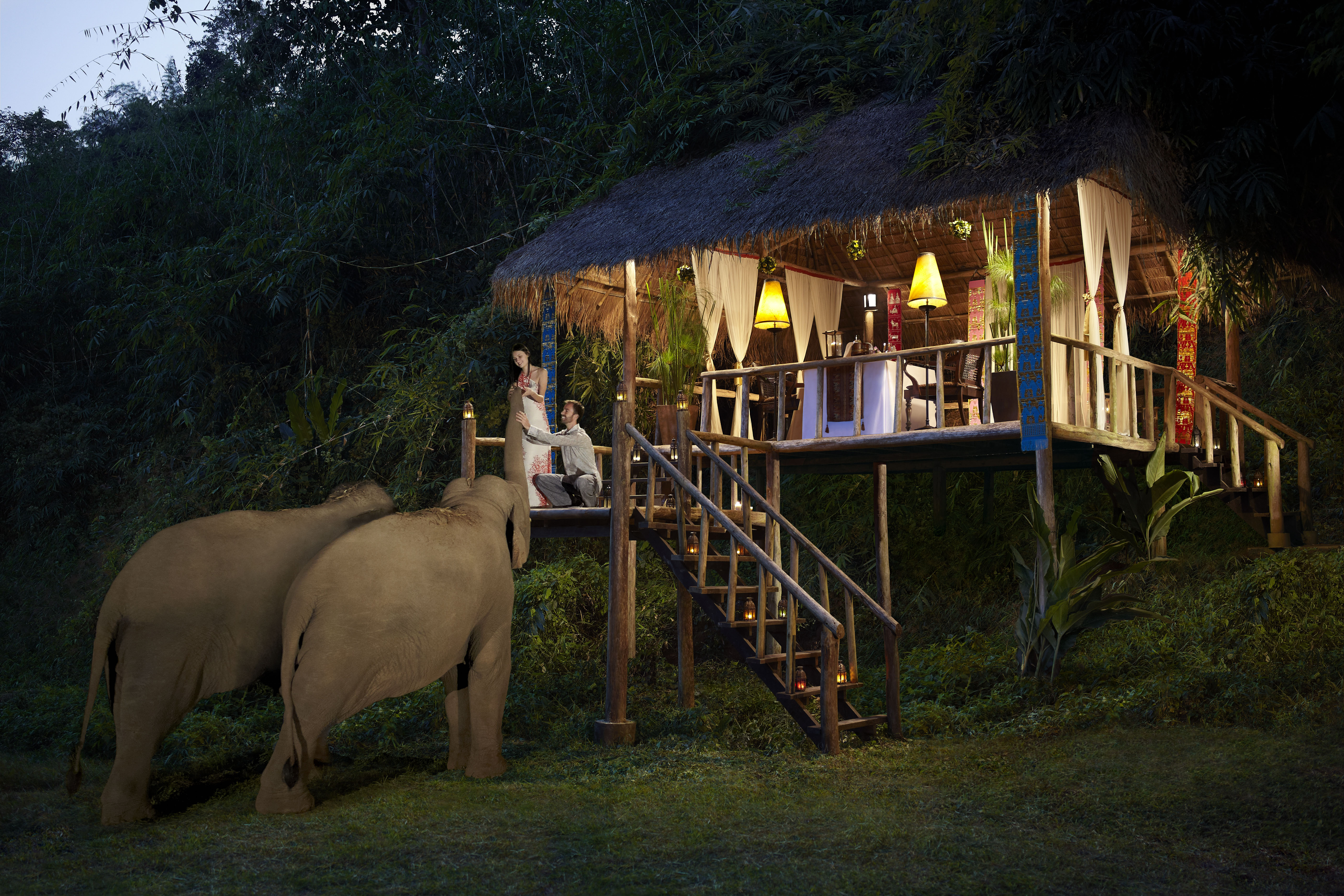 Hi_AGT_51908573_Baby_Elephant_Camp