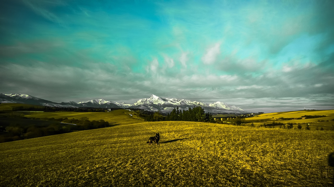country-716918_1280