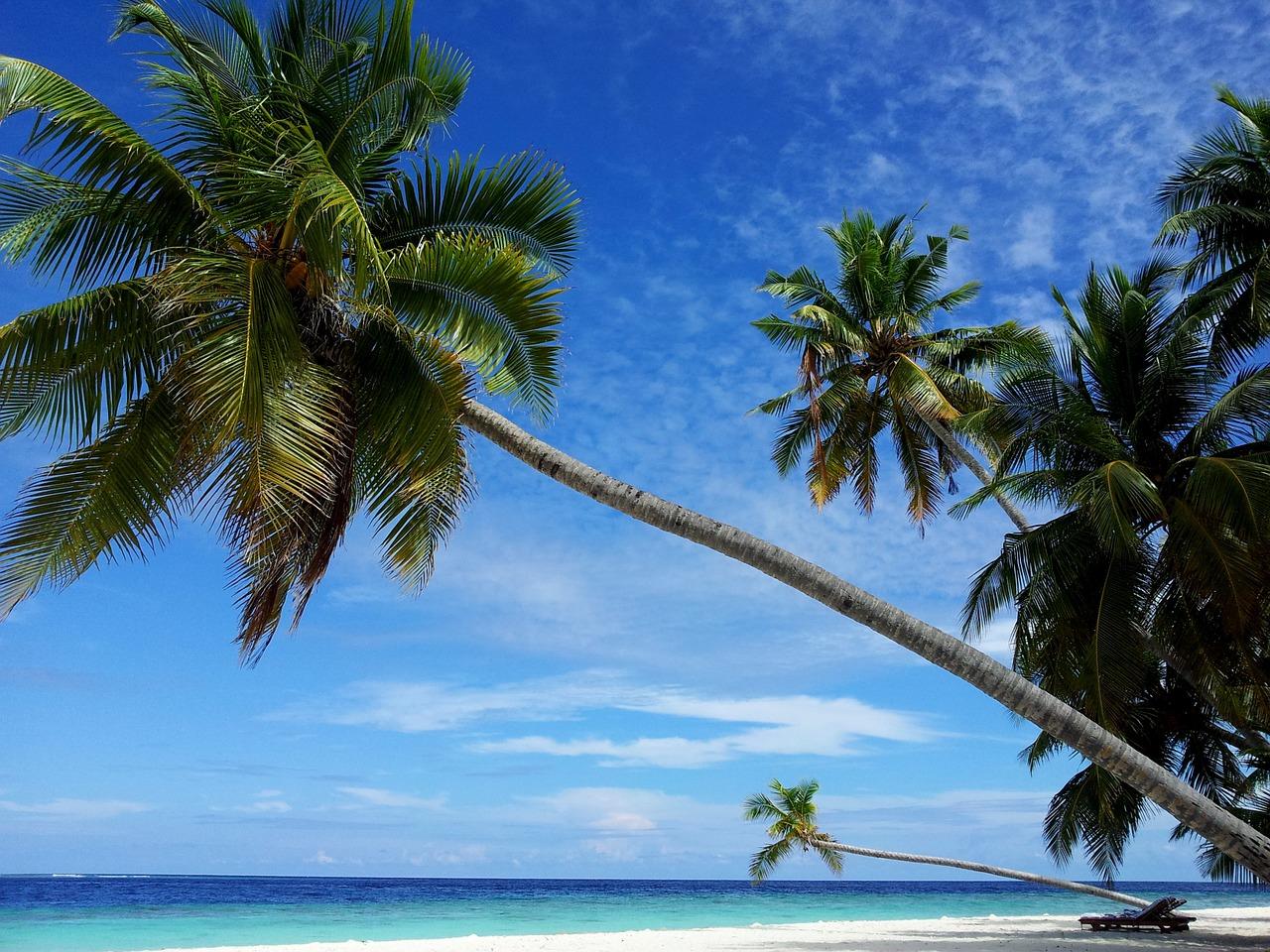 maldives-850508_1280