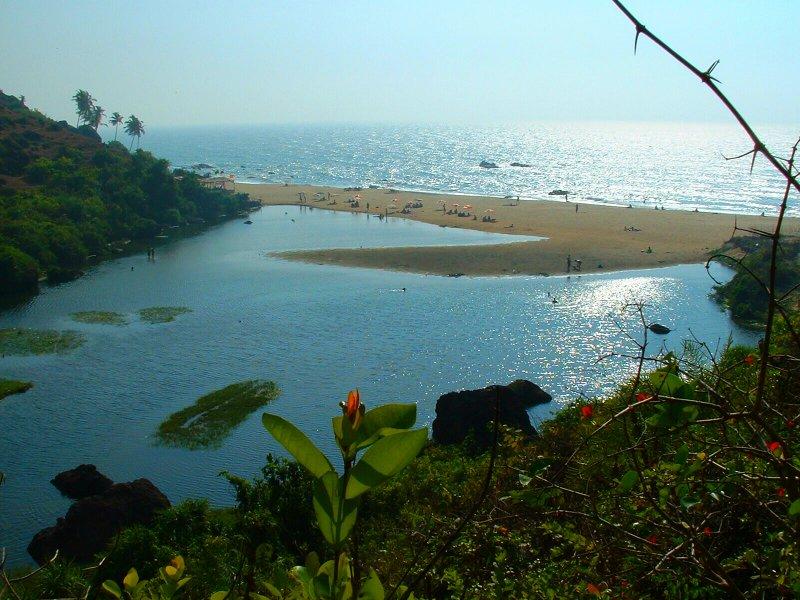 India_Goa_Arambol_Beach