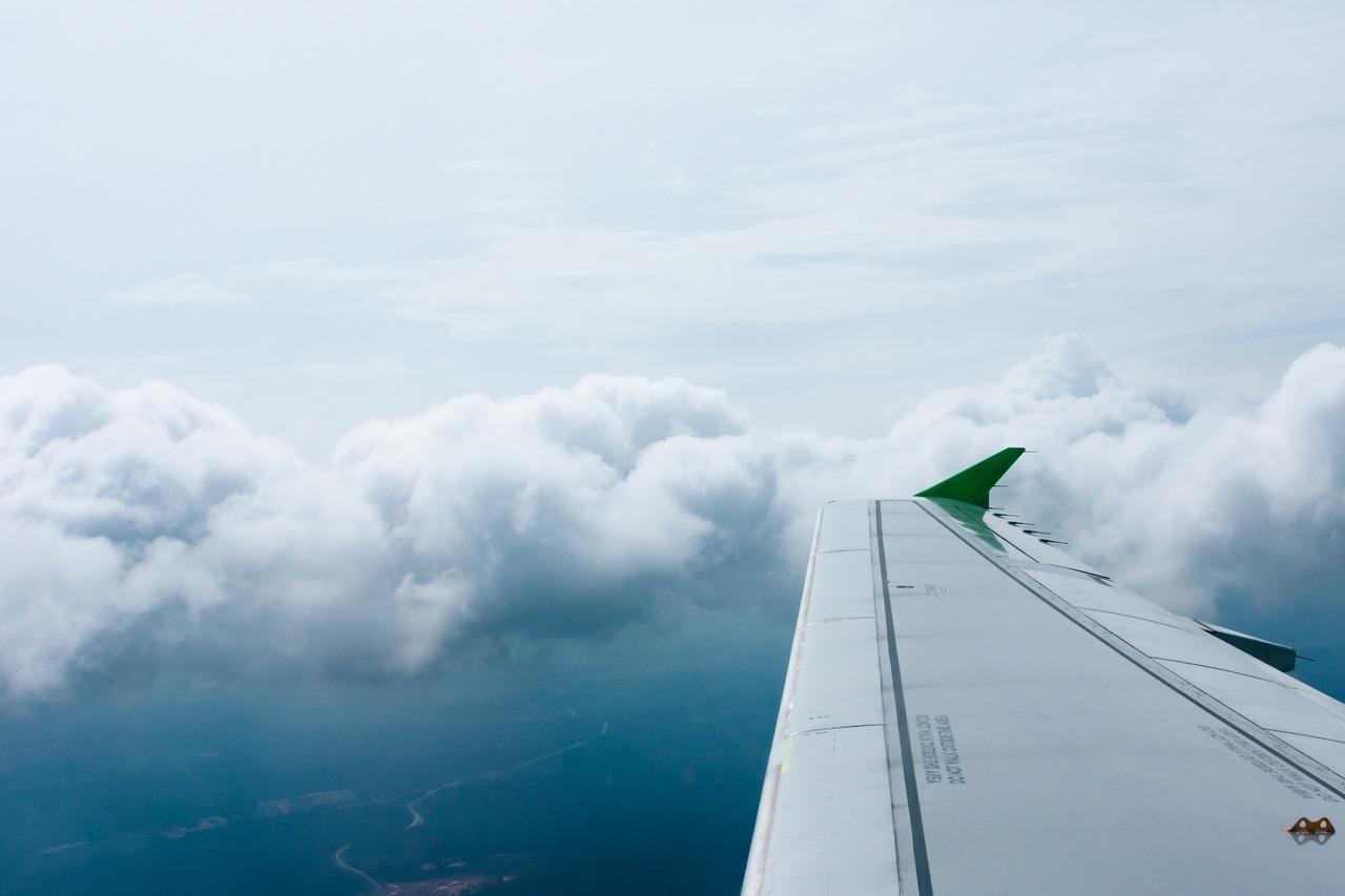 fly-869595_1280