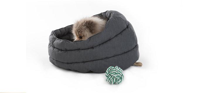 gift-ideas-new-puppy