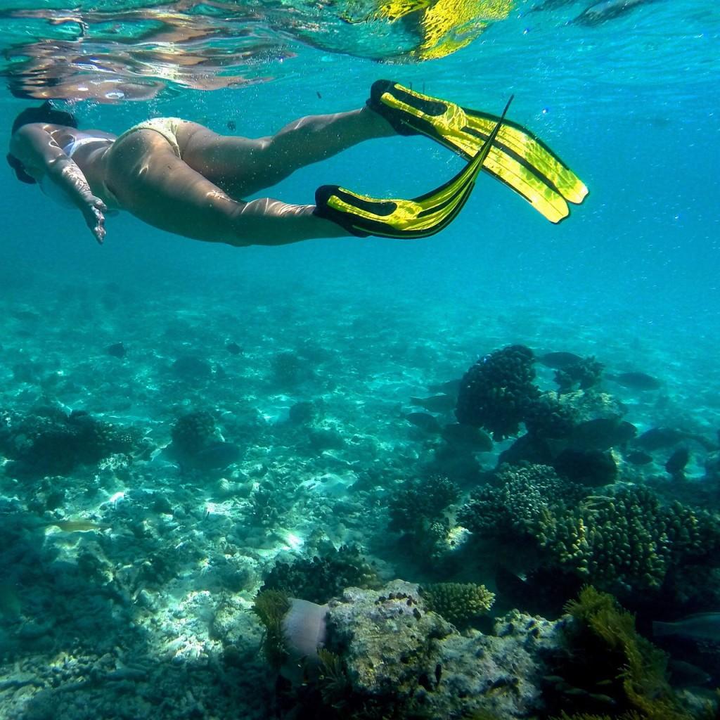 Baros_Maldives_Luxury_Resort_Paradise_House-Reef_Snorkel-2-1024x1024