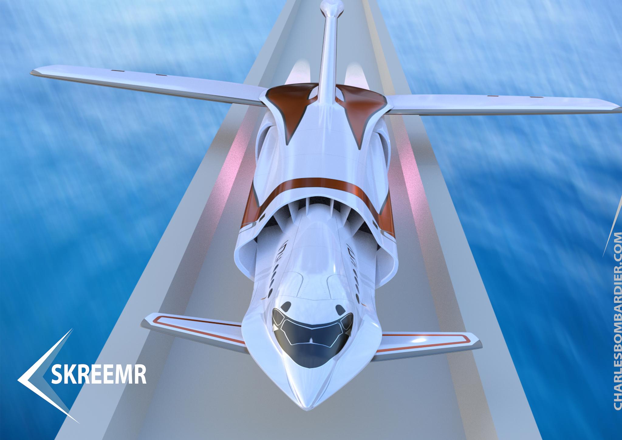 Ipad-Skreemr-2