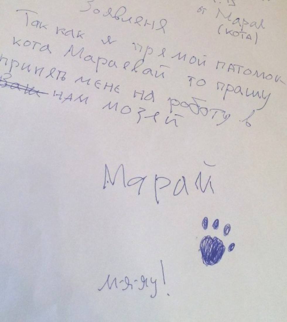 As I am a direct relative of (Anna) Maraeva, I ask you to give me a job in your museum. Maray the Cat.