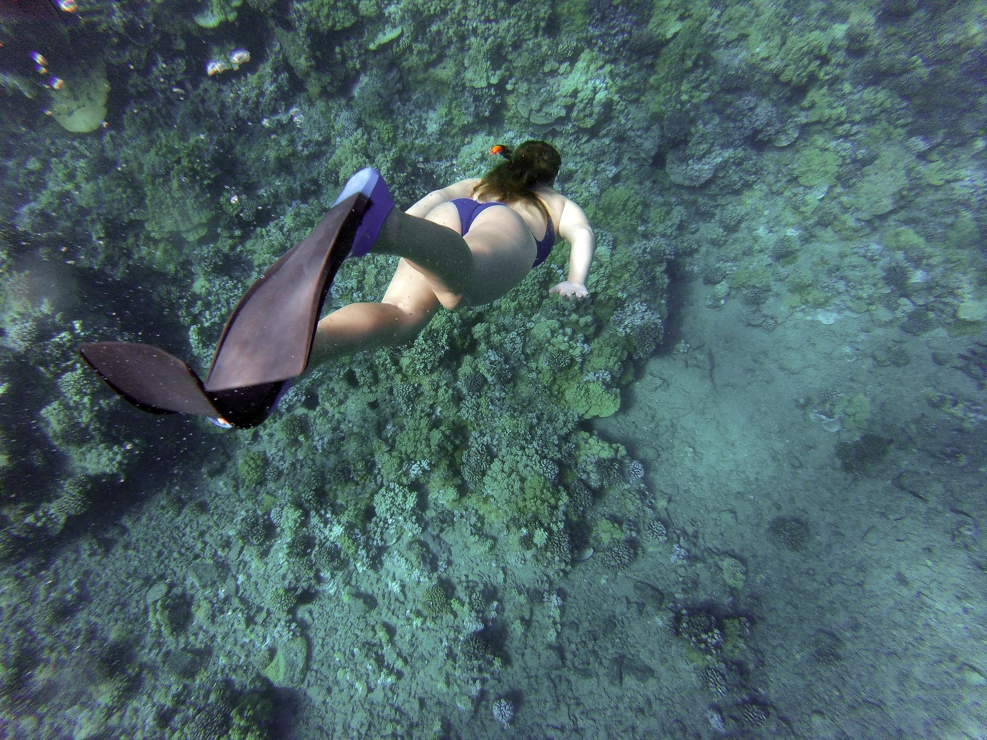snorkeling-984422_1920