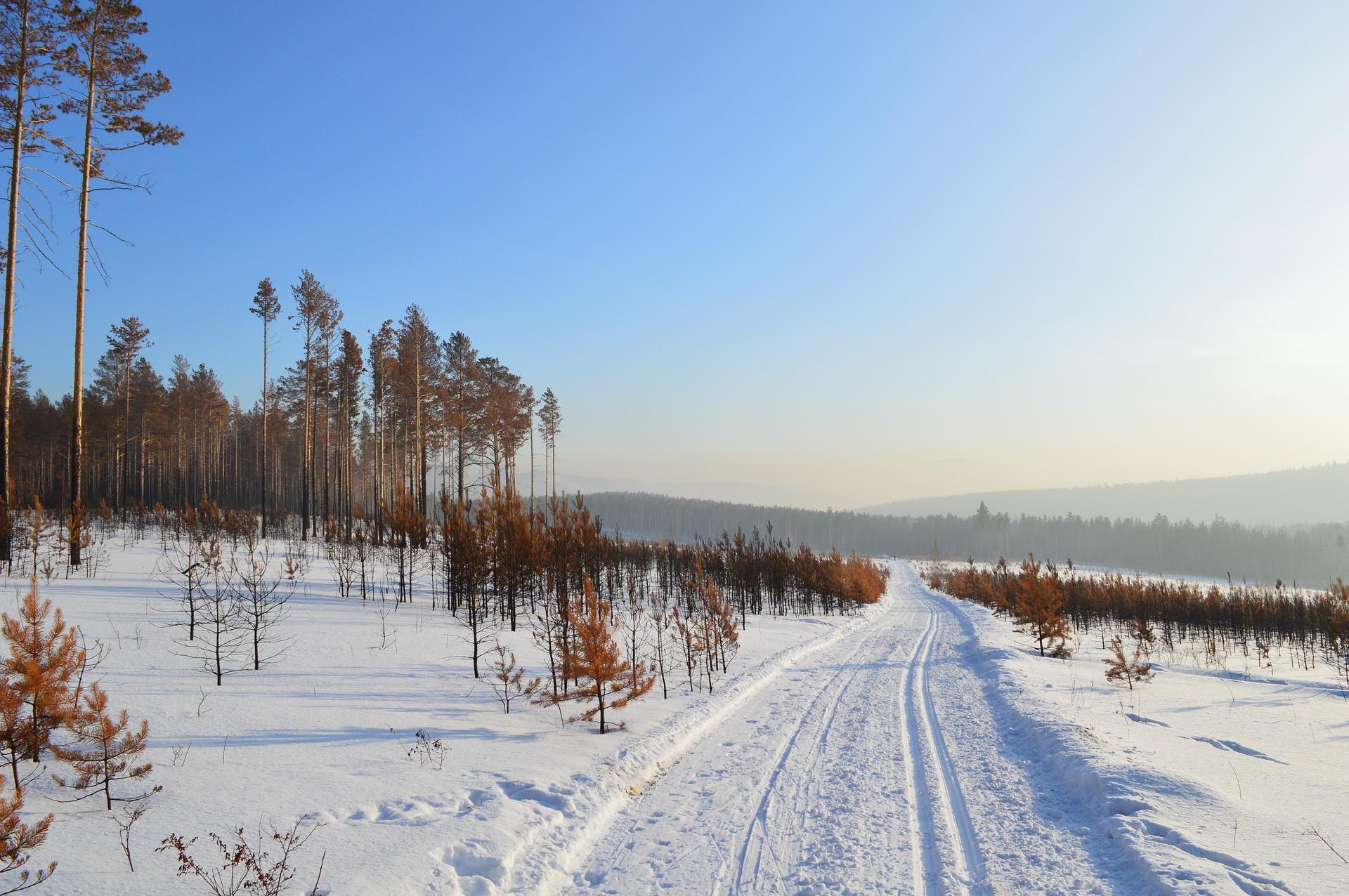 winter-1378557_1920