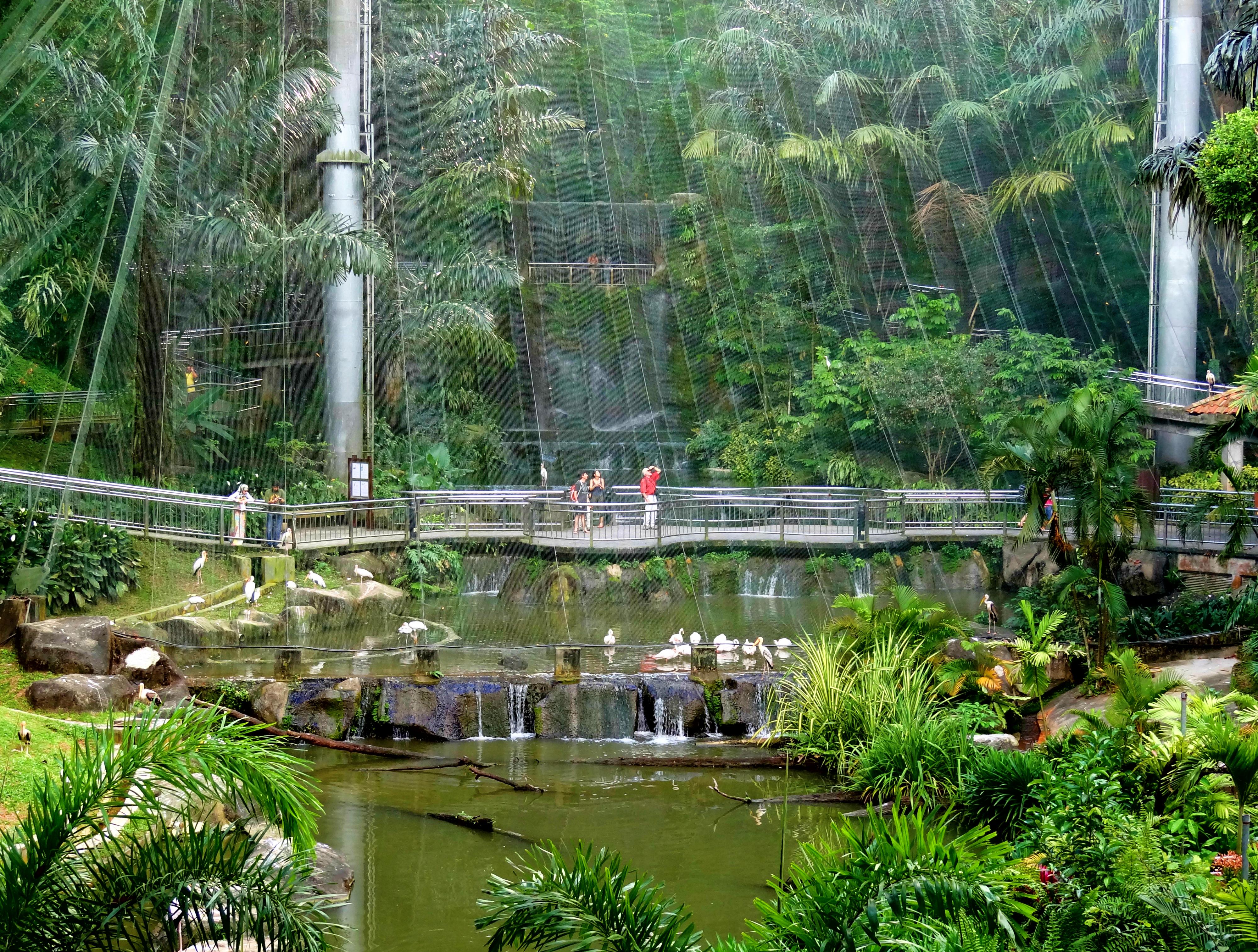 kuala-lumpur-bird-park-inside